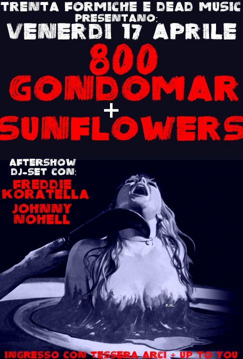 800 Gondomar + The Sunflowers