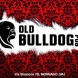 Old Bulldog Pub