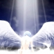 NEW ANGELUS