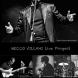 MECCO VILLANI LIVE PROJECT