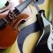 violinochitarraelettrica